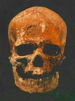 Fossil Hominids: Cro-Magnon Man