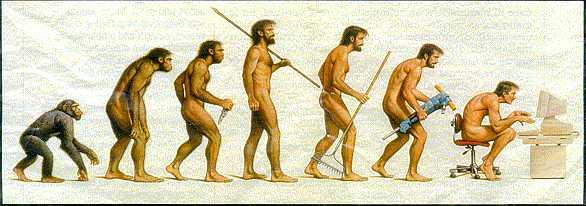 Do my evolution homework for me